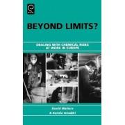 Beyond Limits? by David Walters
