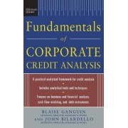 Standard & Poor's Fundamentals of Corporate Credit Analysis by Blaise Ganguin