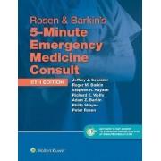 Rosen & Barkin's 5-Minute Emergency Medicine Consult by Jeffrey J. Schaider
