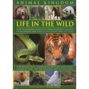 Michael Chinery Animal Kingdom: Life in the Wild - How Wild Animals Survive in Their Different Habitats, from Deserts and Jungles to Oceans and the Skies
