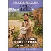 Little House in Brookfield by Maria D Wilkes