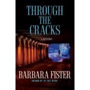 Through the Cracks by Professor Barbara Fister