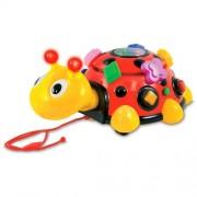 The Learning Journey Funtime Activity Ladybug by The Learning Journey