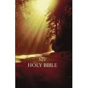 NIV Outreach Bible by Zondervan Bibles
