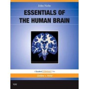 Essentials of the Human Brain by John Nolte