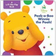 Disney Baby Peek-A-Boo Winnie the Pooh by Marcy Kelman