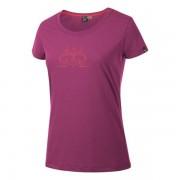 Salewa Fanes Cow DRY T-Shirt Damen