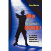 Why Do Criminals Offend? by Robert Agnew