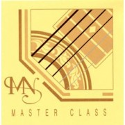 Newtone Master Class Acoustic Guitar Strings
