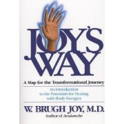 Joy's Way by W.Brugh Joy