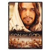 Son of God:Diego Morgado,Amber Rose Revah - Fiul lui Dumnezeu (DVD)