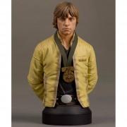 Star Wars Luke Skywalker Hero of Yavin Bust