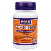 Pycnogenol 30mg - 30 vcaps
