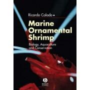 Marine Ornamental Shrimp by Ricardo Calado