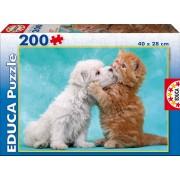 EDUCA 15910 Puzzle pisică şi căţeluş 200 bucăţi 40*28 cm