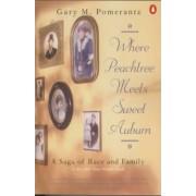 Where Peachtree Meets Sweet Auburn by Gary M Pomerantz