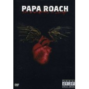 Papa Roach - Live & Murderous In Chicago (0602498872192) (1 DVD)