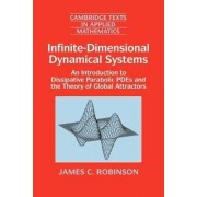Infinite-Dimensional Dynamical Systems by James C. Robinson