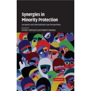 Synergies in Minority Protection by Kristin Henrard