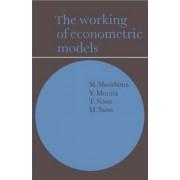 The Working of Econometric Models by Michio Morishima