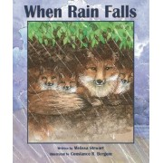 When Rain Falls by Melissa Stewart