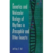 Genetics and Molecular Biology of Rhythms in Drosophila and Other Insects: v.48 by Jeffrey C. Hall