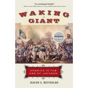 Waking Giant by David S Reynolds