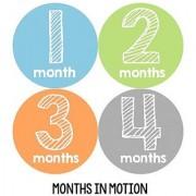 Months in Motion 108 Monthly Baby Stickers Baby Boy Milestone Age Sticker Photo