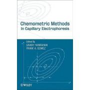 Chemometric Methods in Capillary Electrophoresis by Grady Hanrahan