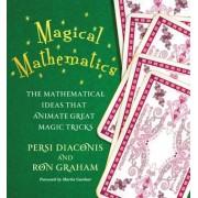 Magical Mathematics: The Mathematical Ideas That Animate Great Magic Tricks, Paperback