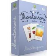 Montessori - Clasificare Anotimpuri