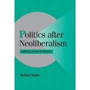Politics after Neoliberalism by Richard C. Snyder