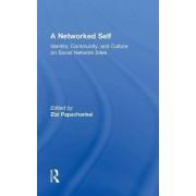 A Networked Self by Zizi Papacharissi