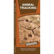 Animal Tracking by James Kavanagh