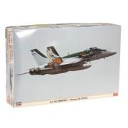 F/A 18 C Super Hornet [Chippy Ho Final] (Plastic Model)
