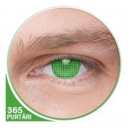 Blind Screen Green