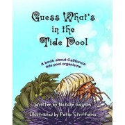 Guess What's in the Tide Pool by Natalie Gagnon