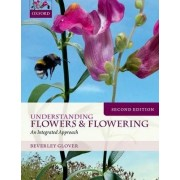 Understanding Flowers and Flowering Second Edition by Beverley Glover