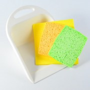Dustpan with 3 sponges