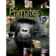 Primates in Perspective by Christina J. Campbell