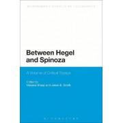 Between Hegel and Spinoza by Hasana Sharp