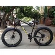 bicycle / fat bikes / cycle / snow bike