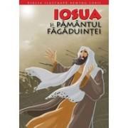 BIBLIA ILUSTRATA PENTRU COPII. IOSUA SI PAMANTUL FAGADUINTEI. Vol. 4