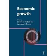Economic Growth by Steven N. Durlauf
