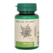 Boswellia 60cpr DACIA PLANT