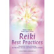 Reiki Best Practices by Walter L