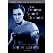 A Streetcar named desire::Vivien Leigh,Marlon Brando - Un tramvai numit dorinta (DVD)