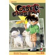 Case Closed: Volume 29 by Gosho Aoyama