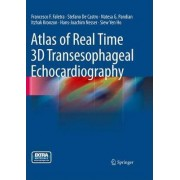 Atlas of Real Time 3D Transesophageal Echocardiography by Francesco Fulvio Faletra