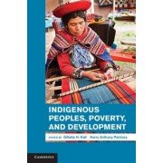 Indigenous Peoples, Poverty, and Development by Gillette H. Hall